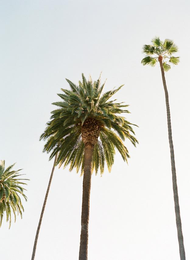 Santa Barbara Engagement Photography 2